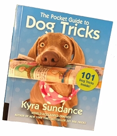 The Pocket Guide to Dog Tricks : 101 Activities to Engage, Challenge, and Bond with Your Dog